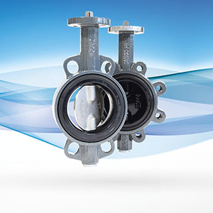 Butterfly Valve Overview